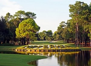 Innisbrook Classic Tampa Golf Package