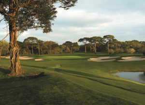 Innisbrook Resort Preferred Tampa Golf Package