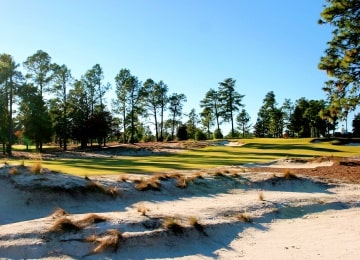 Perfect Pinehurst