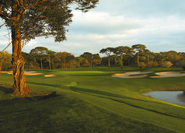 Innisbrook Resort Preferred